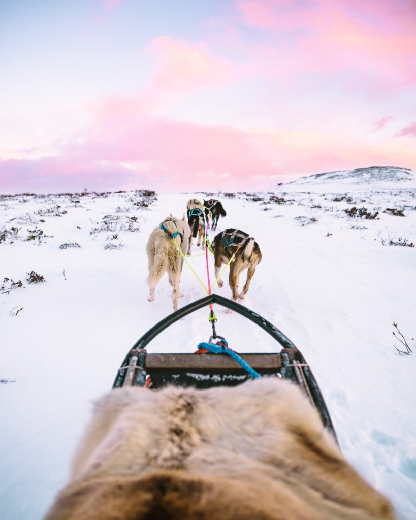 8. Dog sledding Norway