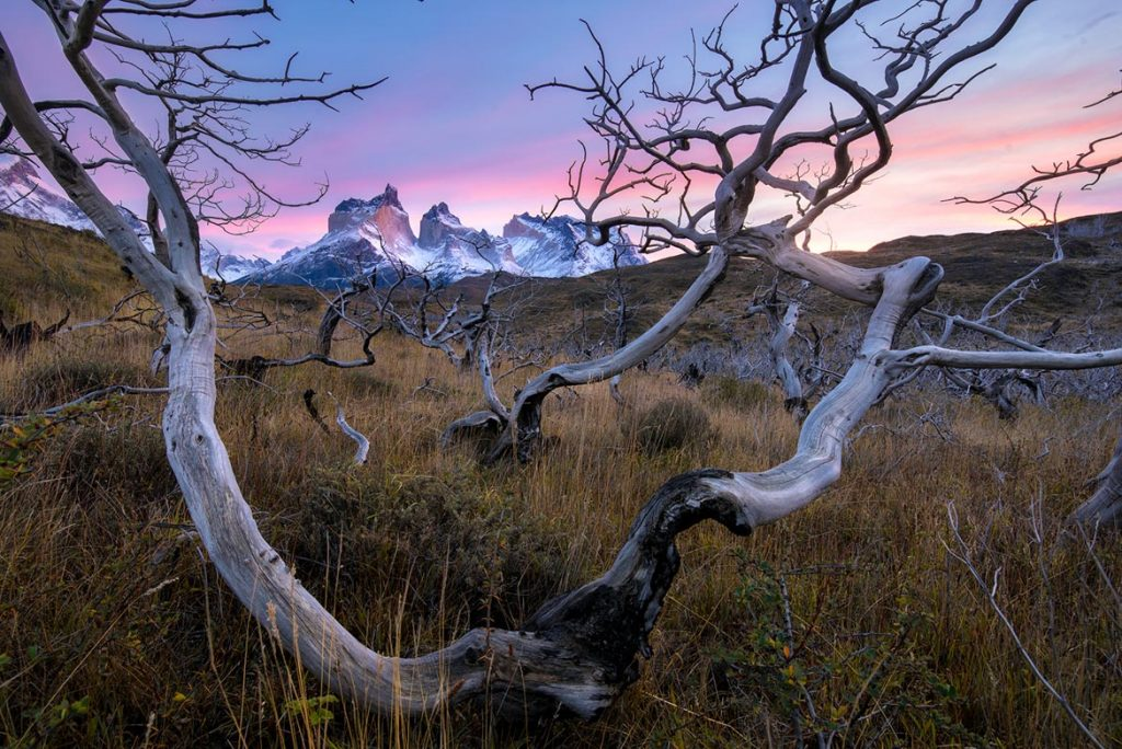 torres_del_paine_William_Patino_sunrise copy-1